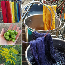 6.15.19. Natural Dye Rainbow with Jackie Ottino Graf