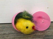 4.6.19 Felted Chicks with Mia Waisman