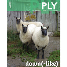 PLY Magazine, Issue 16: Down(-like)