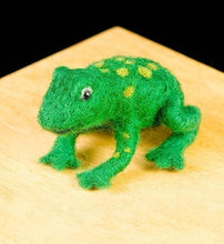 Frog Woolpets Kit