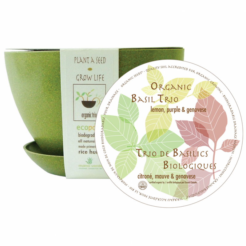 Organic Basil Trio: Lemon, Purple & Genovese