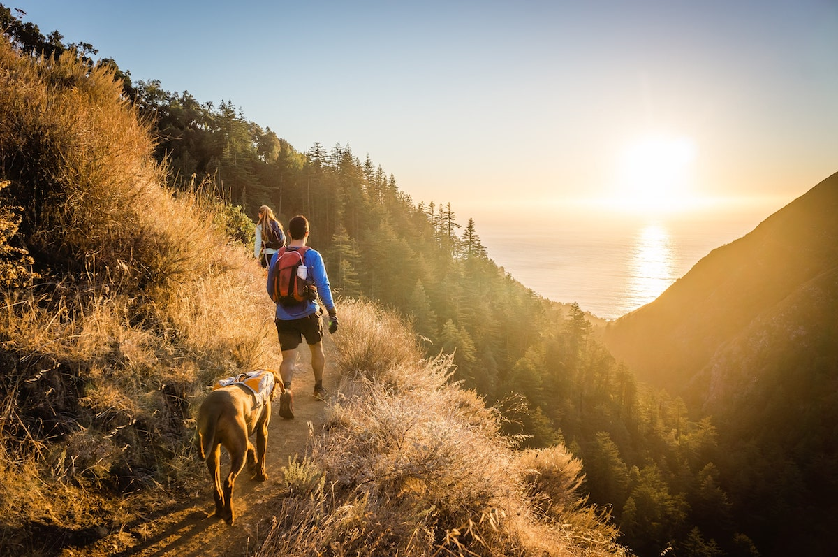 10 Tips for Hiking with Dogs & the Gear to Bring