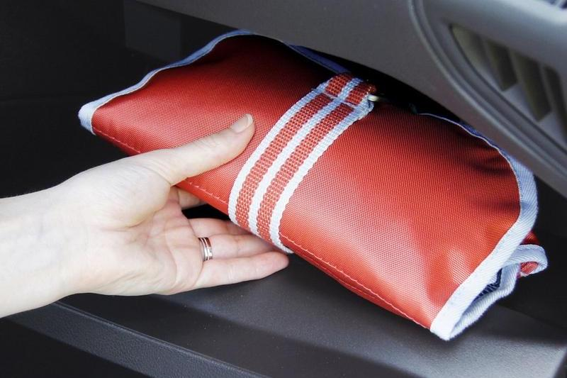 dog first aid kit in car glove compartment