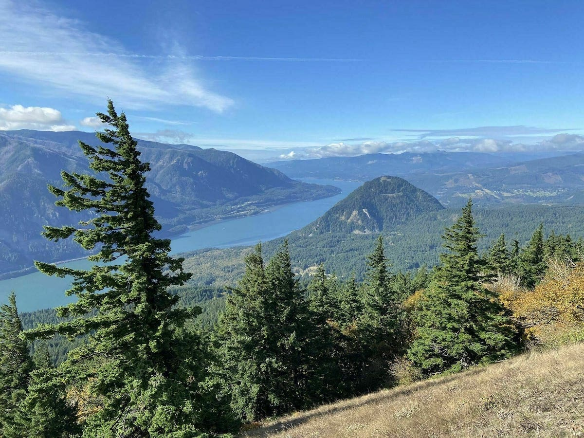 Dog Mountain Trail Hike and View of Columbia River Gorge