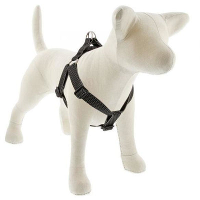 LupinePet Eco Step-In Dog Harness