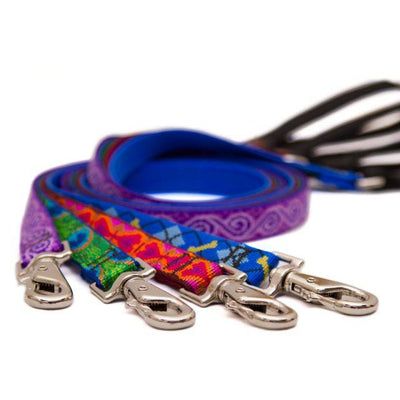 LupinePet Originals Dog Leash