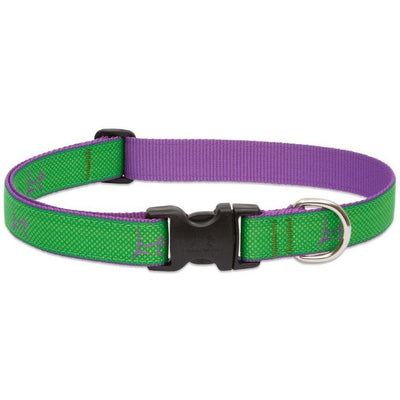 LupinePet Club Dog Collar
