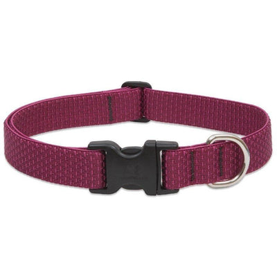 LupinePet Eco Berry Dog Collar