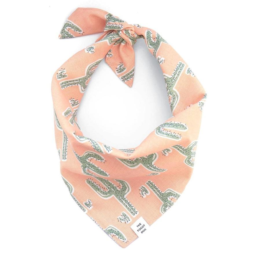 The Foggy Dog - Cactus Garden Bandana