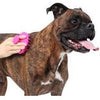 Dexas BrushBuster Silicone Dog Brush