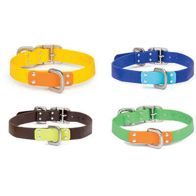 West Paw Jaunts Dog Collar for Active Dogs