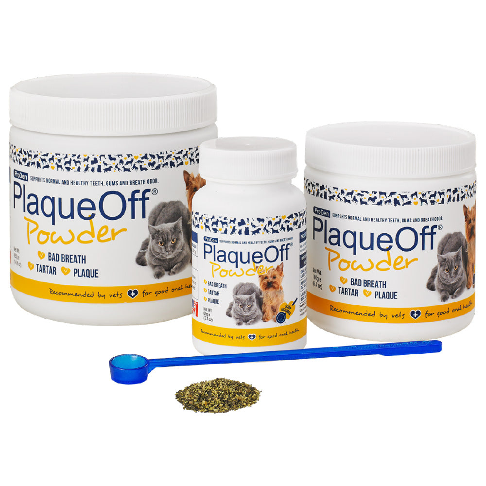 ProDen PlaqueOff® Dental Powder for Cats and Dogs