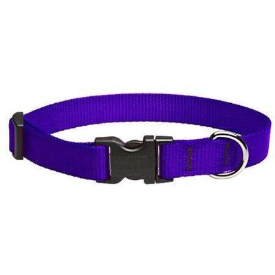 LupinePet Basics Dog Collar
