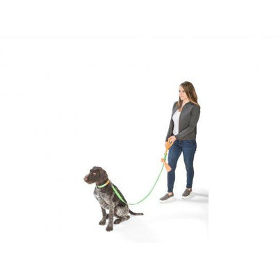 West Paw Strolls Dog Leash with Comfort Grip