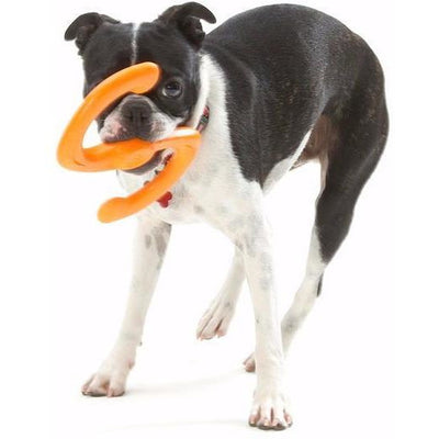 West Paw Zogoflex Bumi Dog Toy