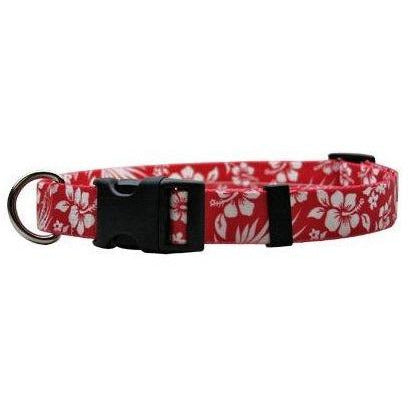 Aloha Red, Dog Collar