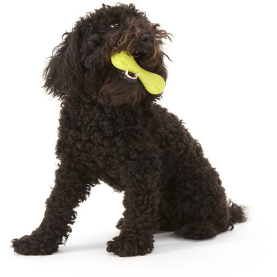 West Paw Zogoflex Hurley Dog Toy