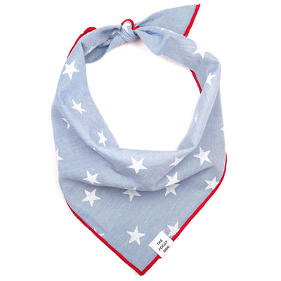 The Foggy Dog - Liberty Dog Bandana