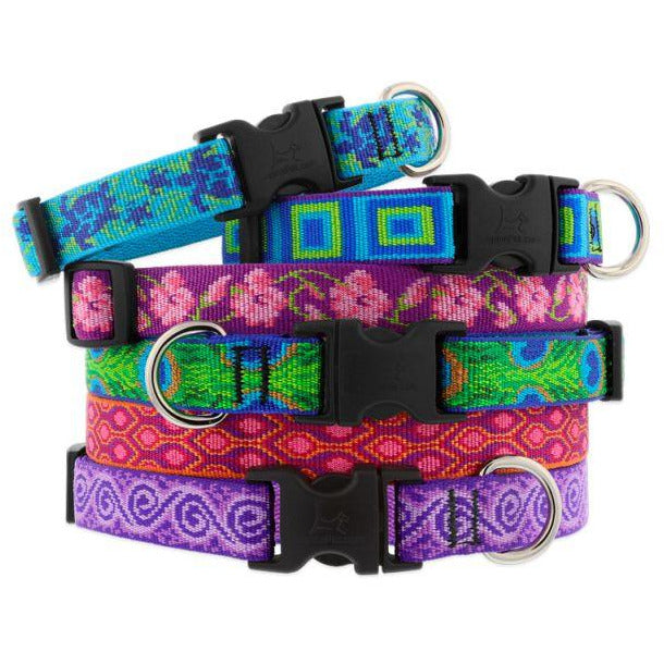 LupinePet Originals Dog Collars