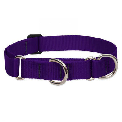 LupinePet Basics Martingale Dog Collar