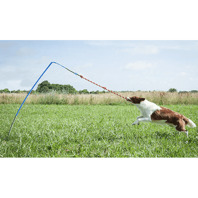 Small Tether Tug (For dogs under 35 pounds)