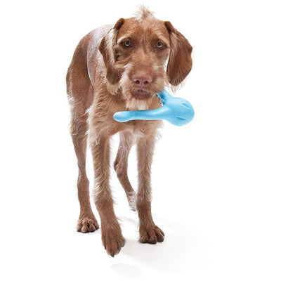 West Paw Tizzi Interactive Dog Toy
