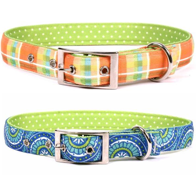 Yellow Dog Design Uptown Dog Collars