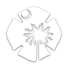 SC Flag Decal