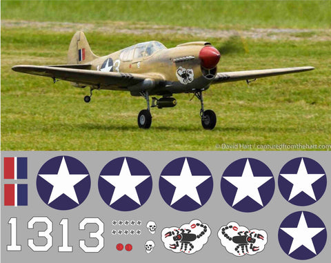 P-40 Black Scorpion #13 Graphics Set