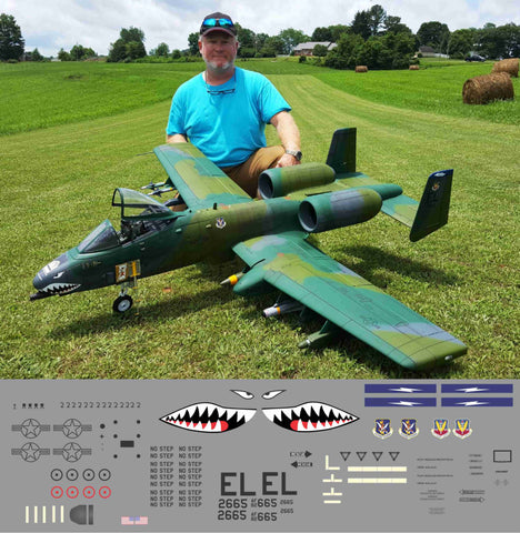 A-10 Flying Tigers Graphics Set