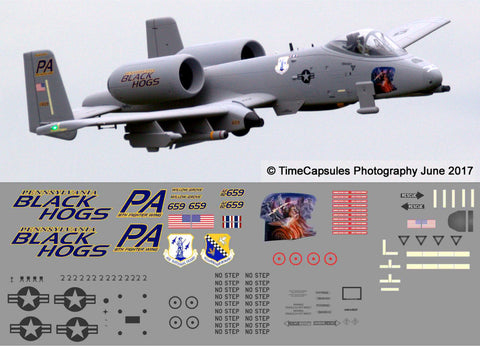 A-10 Pennsylvania ANG Black Hogs Graphics Set