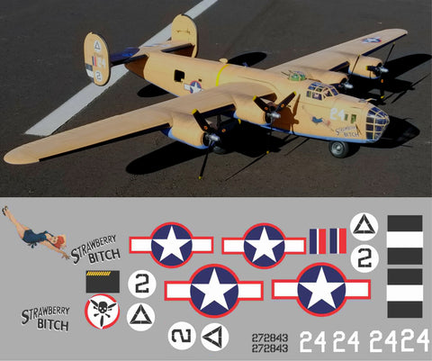 B-24 Strawberry Bitch Graphics Set