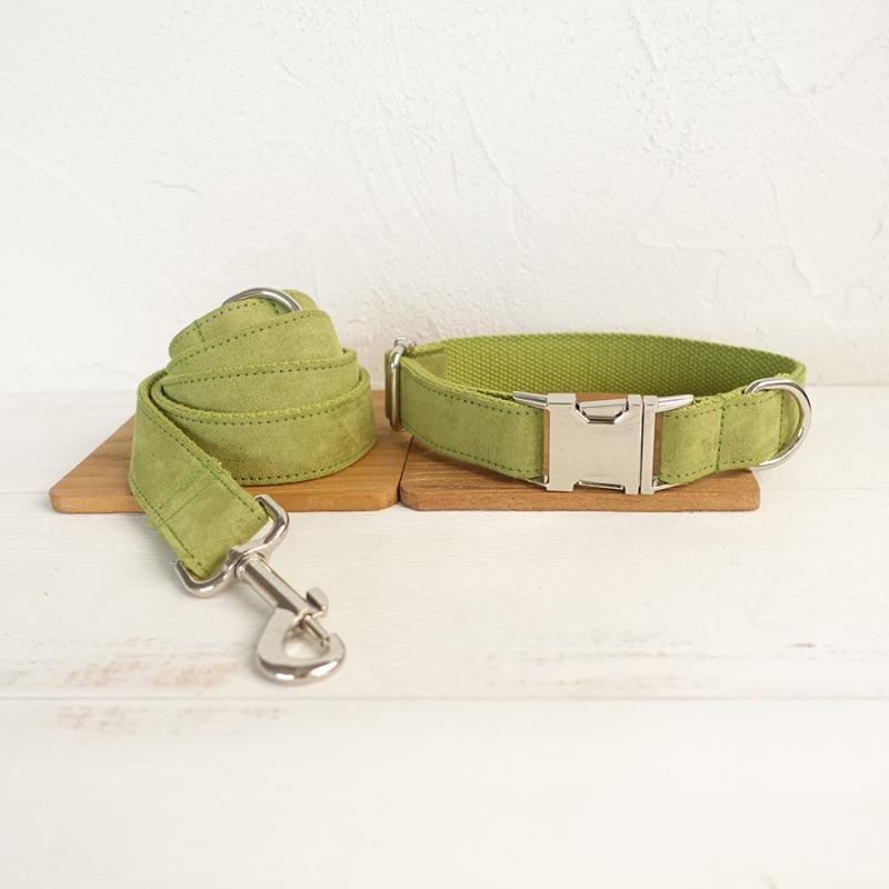 Dog Collar & Leash | Green - Barker & Bone