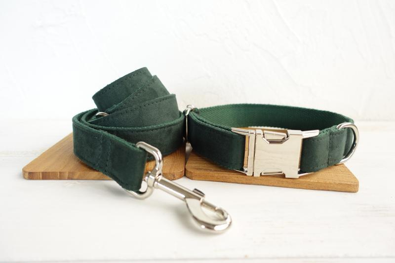 Dark Green Dog Colllar & Leash Set - Barker & Bone