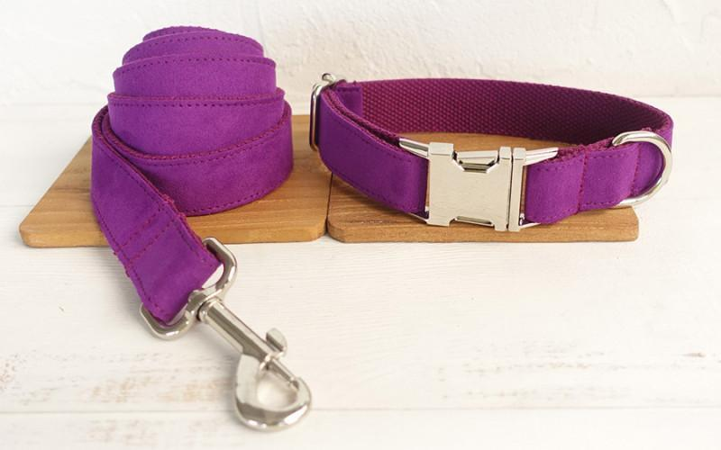 Dog Collar & Leash | Purple - Barker & Bone