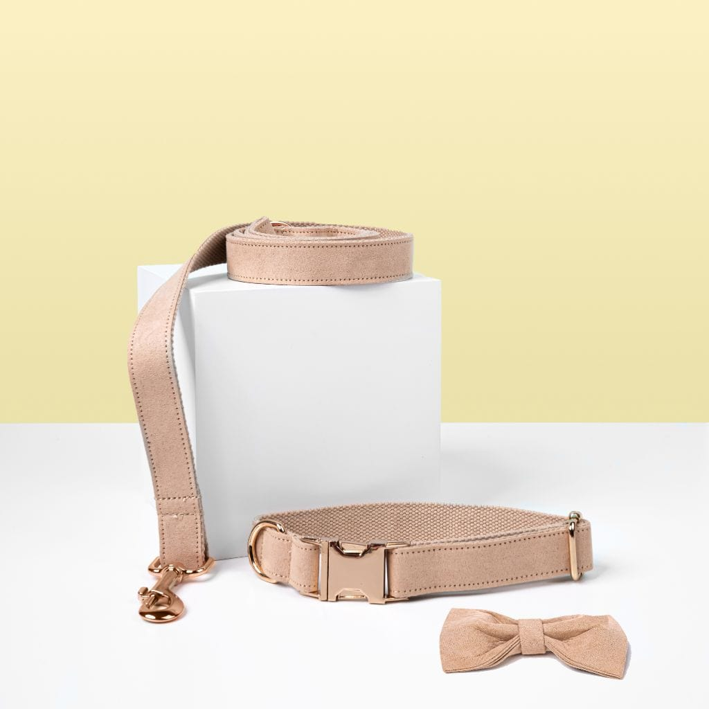 Luxe Dog Collar & Leash | Cream - Barker & Bone