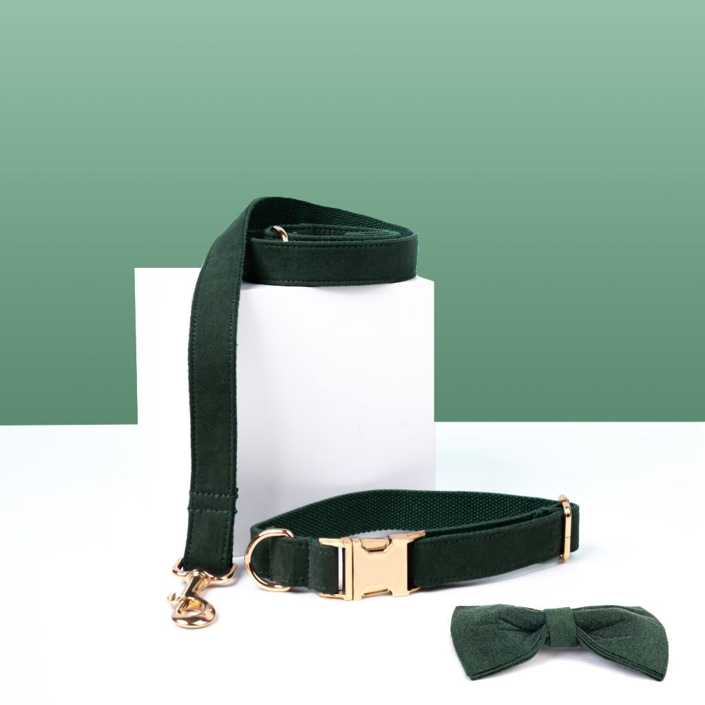 Luxe Dog Collar & Leash | Dark Green - Barker & Bone