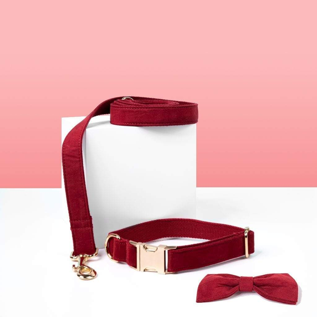 Luxe Dog Collar & Leash | Red Velvet - Barker & Bone