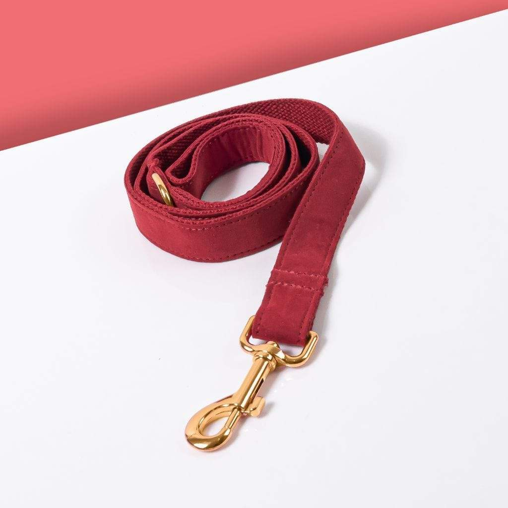 Luxe Dog Leash | Red Velvet- Barker & Bone