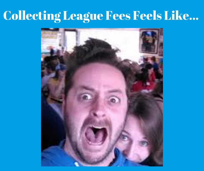 Add a Pay League Fees Button to your Website - The Easy Way