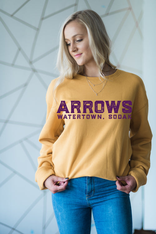 Arrows SoDak