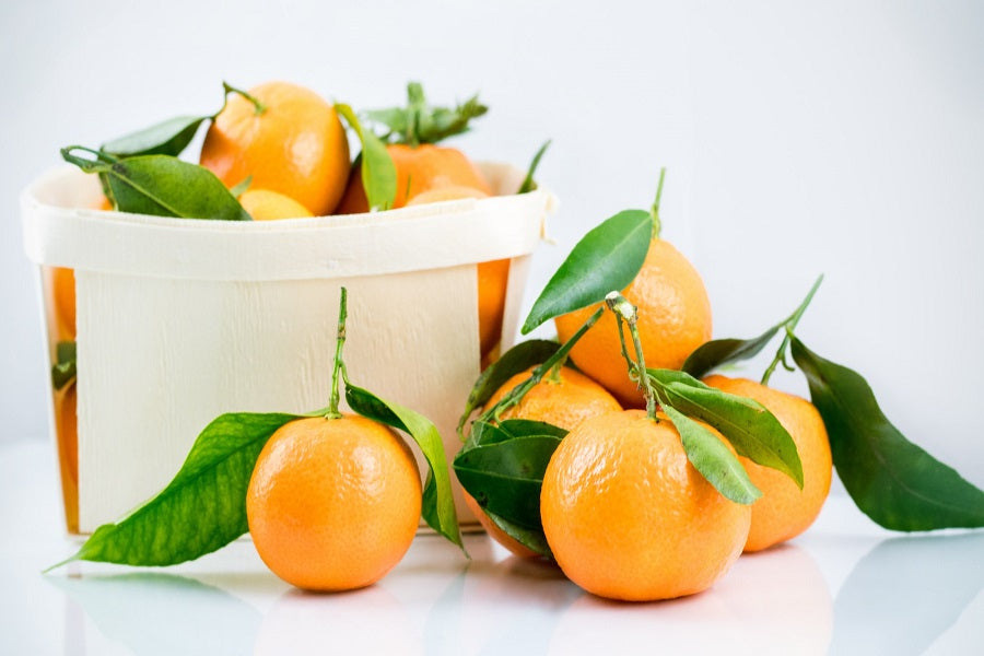 Basket of Citrus Fruit