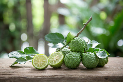 The Kaffir Lime & the Interesting Household Things You Can Do With It