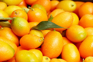 Delicious Kumquat Recipes to Try