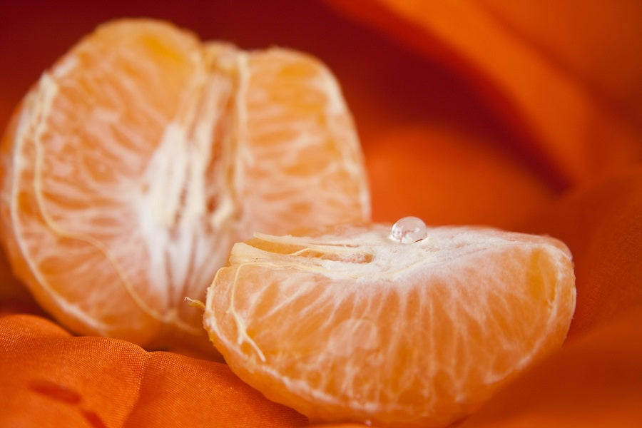 7 Benefits Of Growing Valencia Orange Trees Indoors