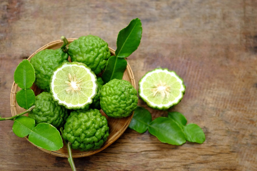 What Is A Kaffir Lime Amp Why Should You Use It Us Citrus