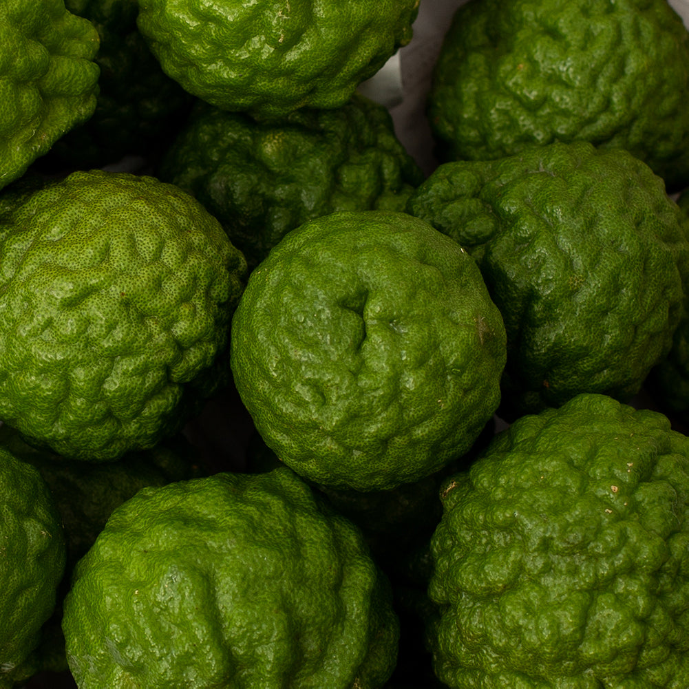Kaffir (Makrut) Lime Fruit for Sale