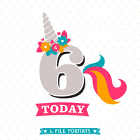 Sixth Birthday cut file designed by Queen SVG Bee