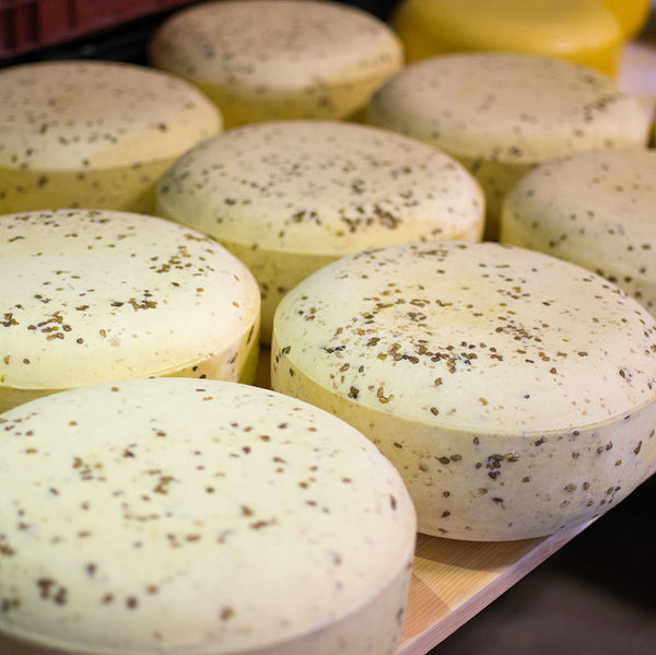 Basil Gouda Cheese - an old fashioned Dutch cheese