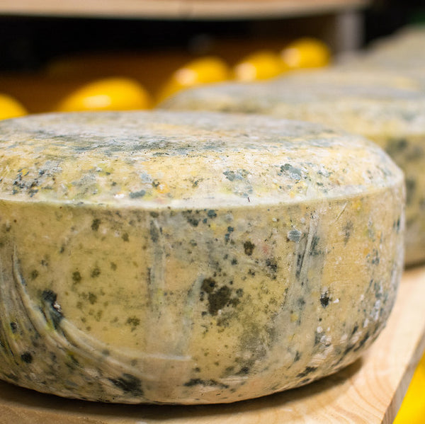 Brookford Blue - hand made with raw milk from our grass fed cows. Aged a minimum of 60 days